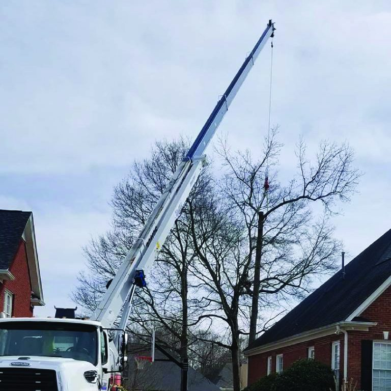 Complex Removal with a crane